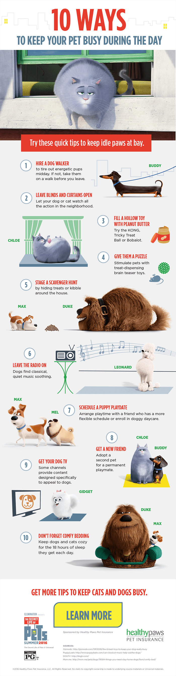 10-Ways-to-Keep-Pets-Busy
