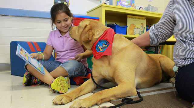 children therapy dog in schools