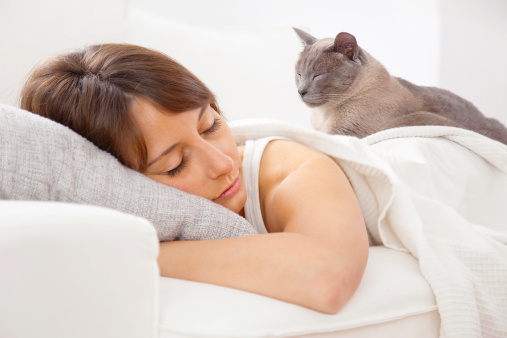 cat sleeping on woman