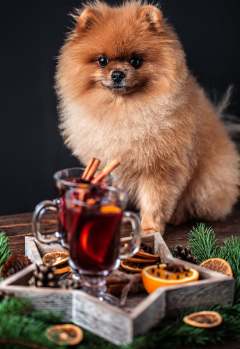 cinnamon dogs