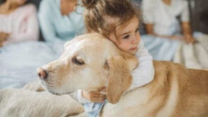 childhood cancer and service dogs