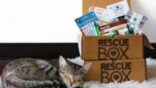 rescue box subscription box
