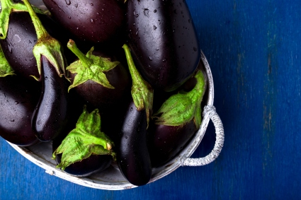 is eggplant safe for dogs