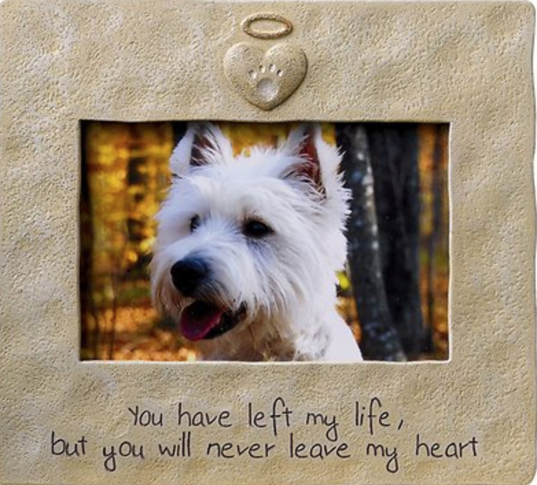 7847955c80f6 Pets have a lasting impact on our lives, and one way to honor and celebrate  them after their passing is to display a loving photograph of them.