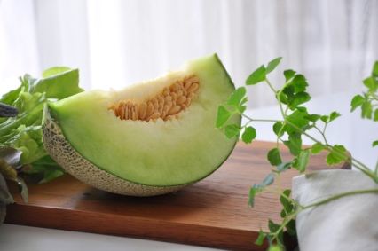 can dogs eat honeydew