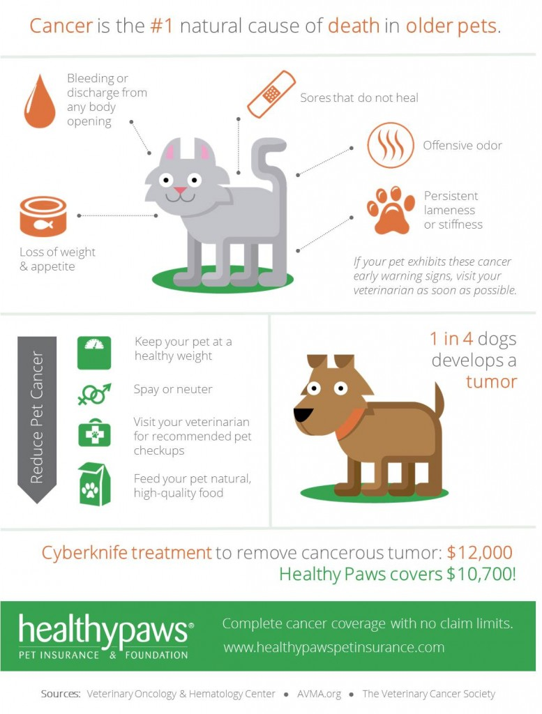 Pets and cancer infographic