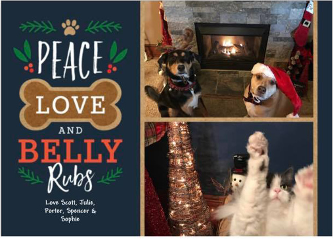 Christmas card with pets