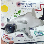 Cat advent calendar