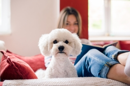 white fluffy dog on couch with woman