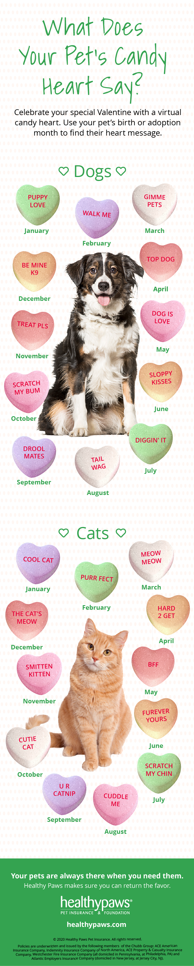 What Does Your Pet's Candy Heart Say?