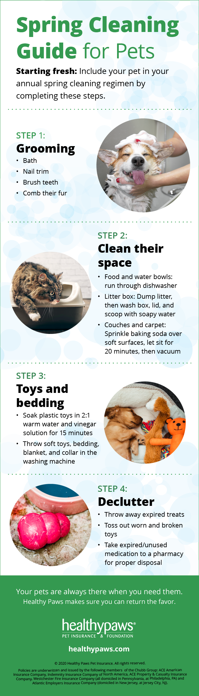 Infographic: Spring Cleaning for pets
