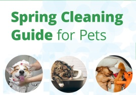 Spring Cleaning Guide for Pets
