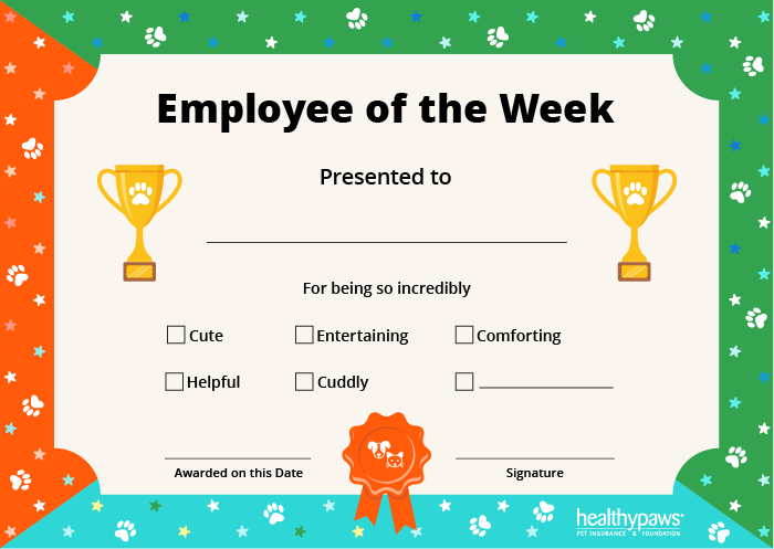 pet employee of the week certificate in color