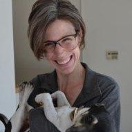 Sarah Wallace DVM profile photo