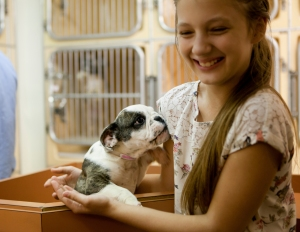 Girl with puppy in shelter