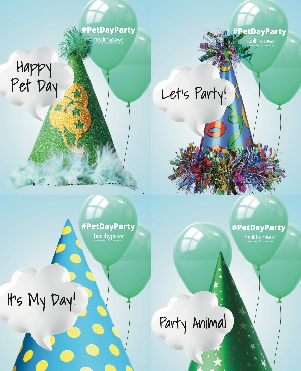 pet day party hats