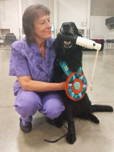 Neon, flat-coated retriever beats canine cancer
