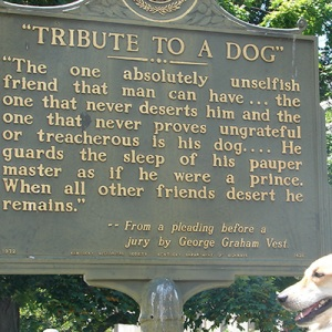 Tribute to a dog plaque