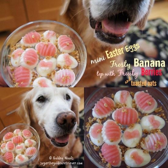 DIY Dog Easter Baskets