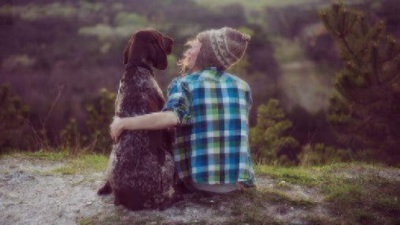 Health Benefits of Owning a Pet | Healthy Paws