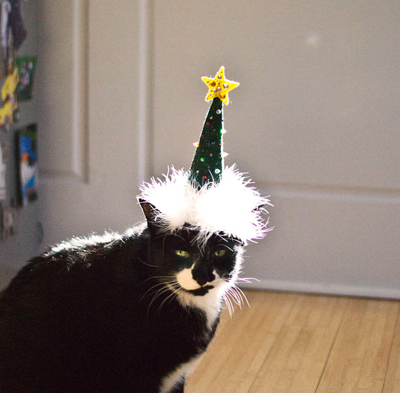 cat christmas tree hat