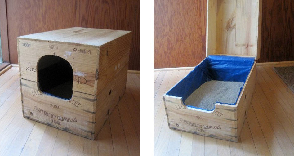 8 Creative Ways To Hide Your Cats Litter Box Healthy Paws