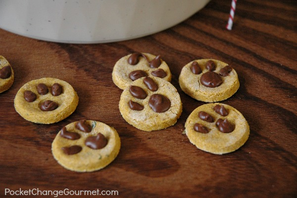 Wheat Free Dog Cookie Recipes