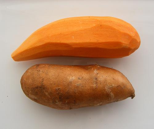 Dried Sweet Potato Dog Treats