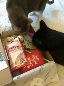 KitNipBox-Box-Review