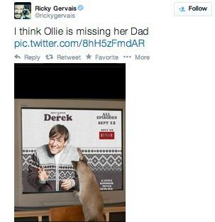 Ricky Gervais Twitter Cat Ollie Pet Adoption
