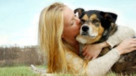 What to Know About Deaf Dogs