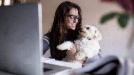 employee benefits pet perks