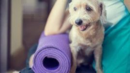 healthy paws yoga dog exercise