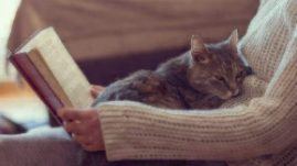 introvert reading with a cat