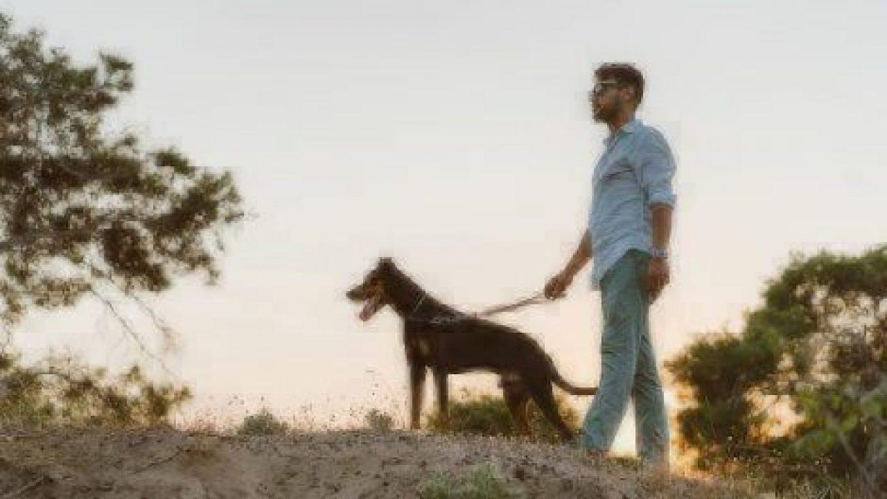 bonding with dog