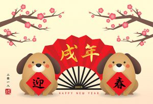 Healthy Paws Chinese New Year