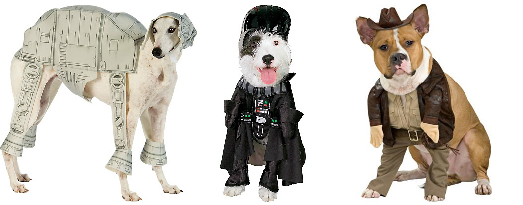 dog Halloween costume ideas  sc 1 st  Healthy Paws Pet Insurance & Dog Halloween Costumes