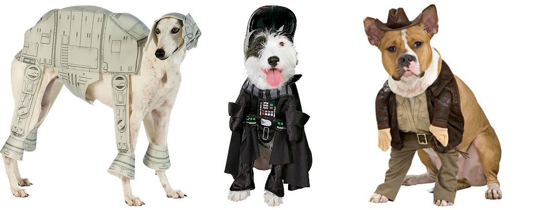 dog Halloween costume ideas  sc 1 st  Healthy Paws Pet Insurance & Dog Halloween Costumes