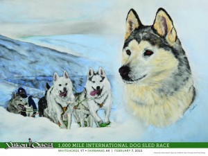 Yukon_Quest_sled_dogs.JPG