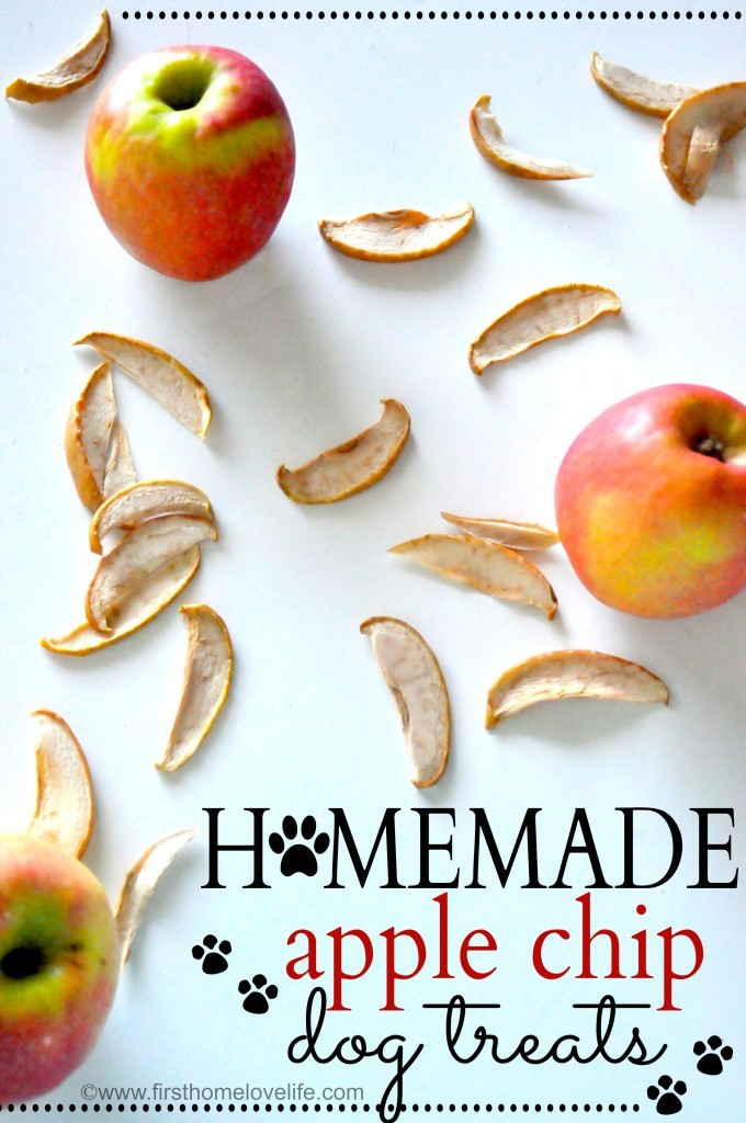 8 delicious apple dog treat recipes healthy paws apple dog treat recipe forumfinder