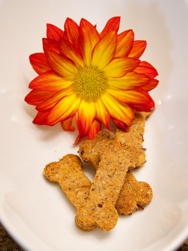 apple dog treat recipe