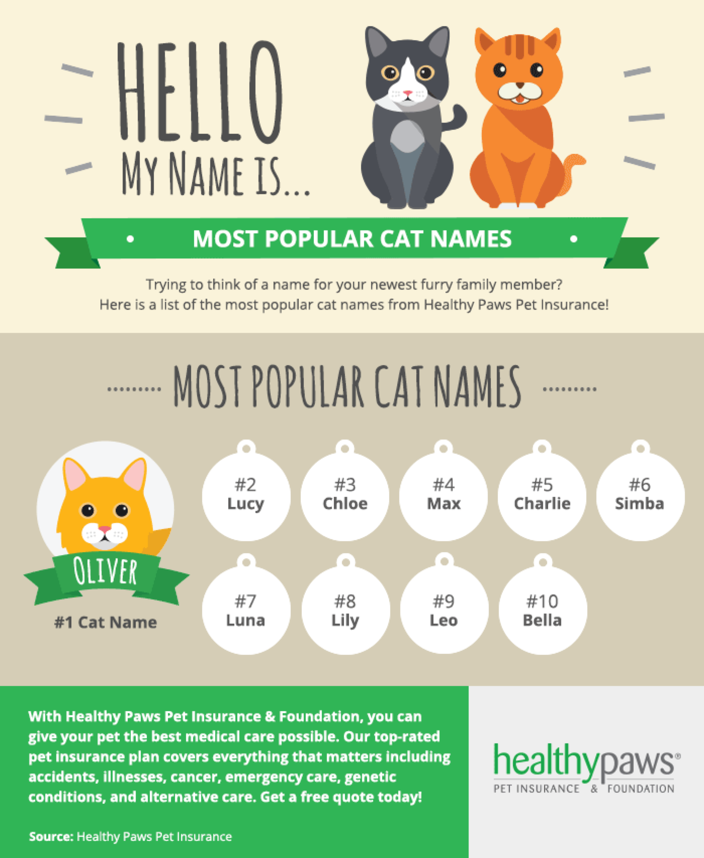 How to name a cat