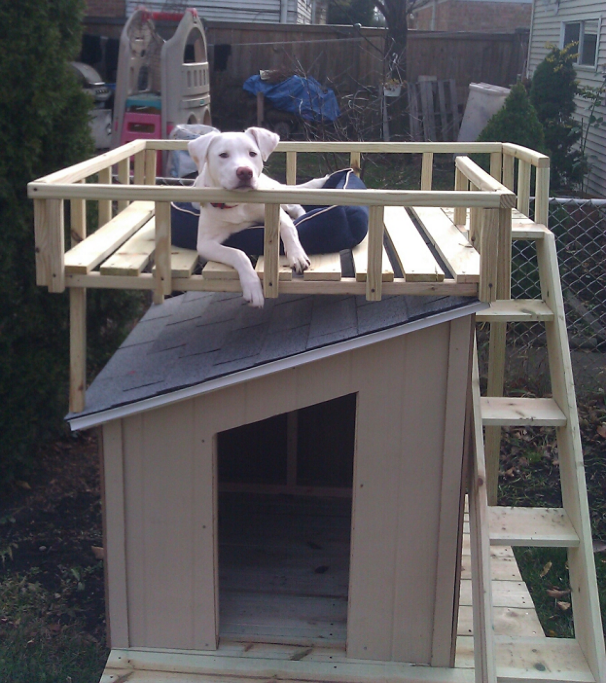 5 droolworthy diy dog house plans healthy paws for Home design diy