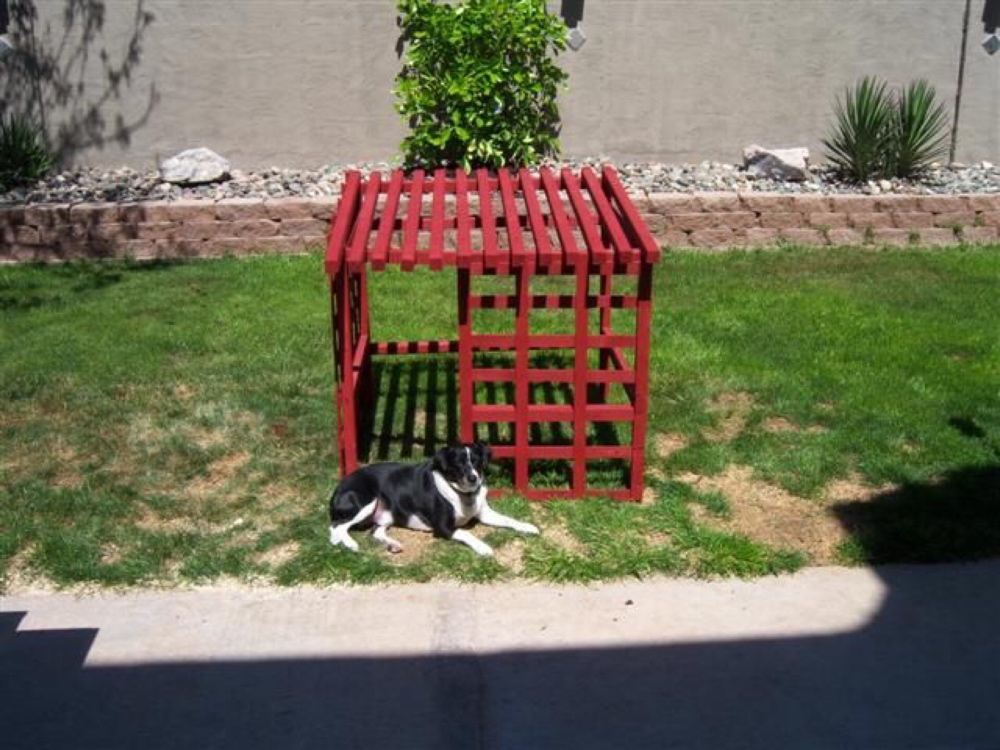 DIY open air dog house