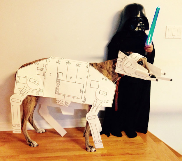 Star Wars dog Halloween costumes