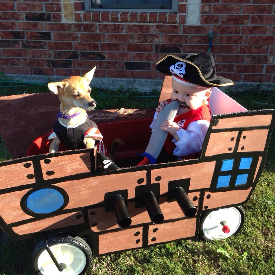 Pirate and first mate Halloween costumes for dogs and babies