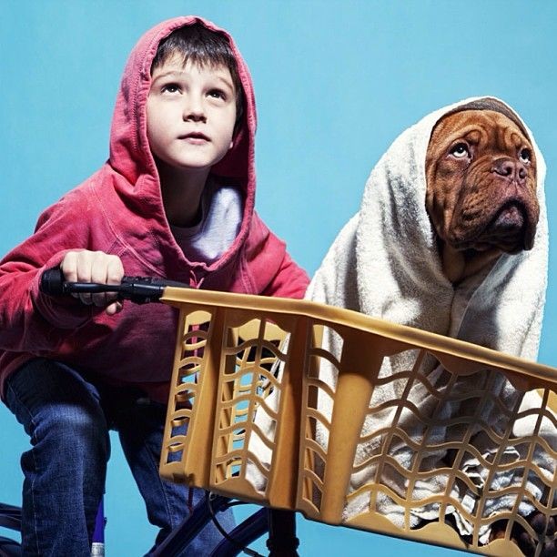 E.T. Halloween costumes for dogs and kids