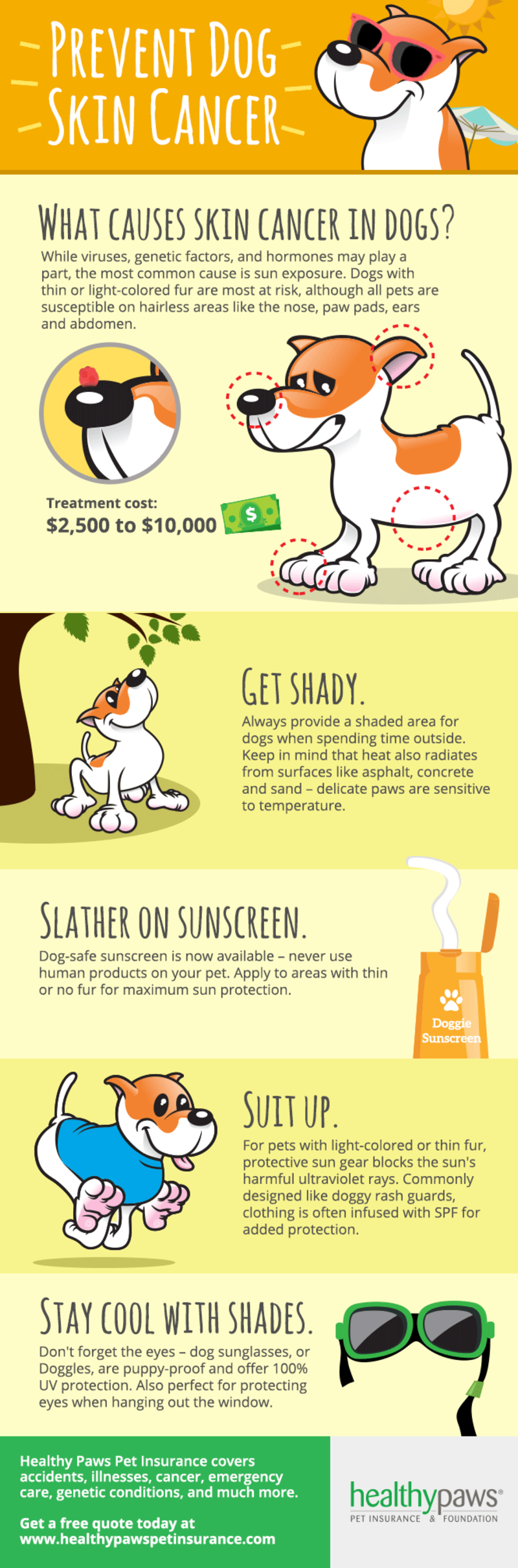 dog skin cancer