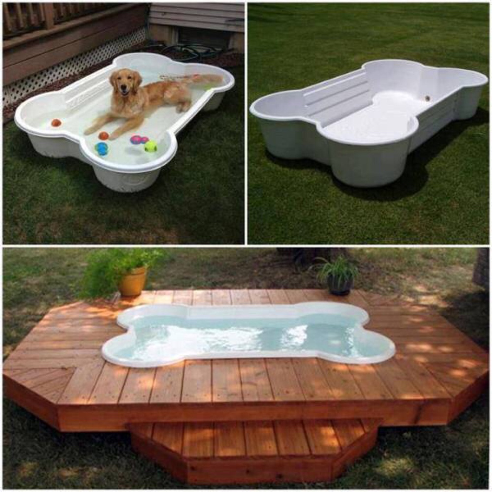build a diy dog pool to keep your pup cool healthy paws. Black Bedroom Furniture Sets. Home Design Ideas
