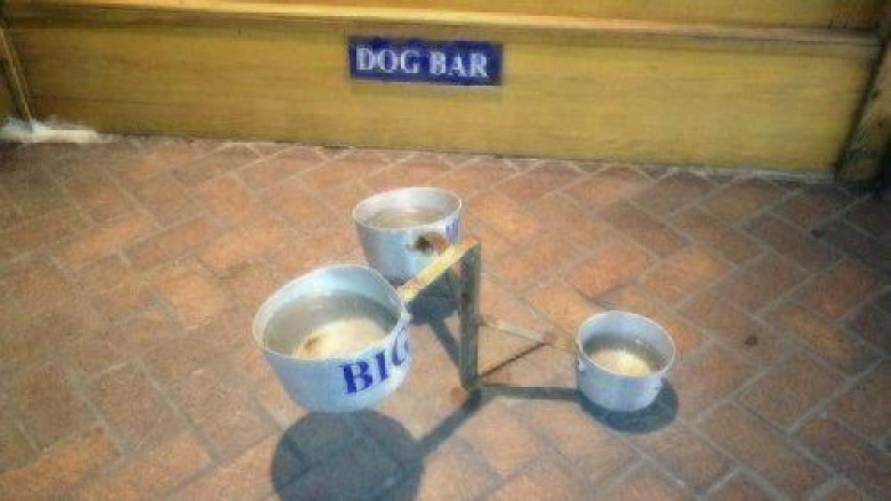The Barking Dog Luncheonette via Yelp
